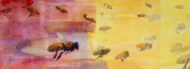 Honeybee Flight IV
