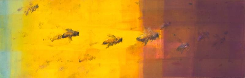Foraging I, (Honeybees)